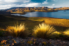 Lake Alto Lagonillas. On the way from Cusco to Lake Titicaca. Night photography. Peru Royalty Free Stock Image