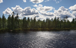 Lake amongst the woods, cloudy summer sky, Sweden royalty free stock images