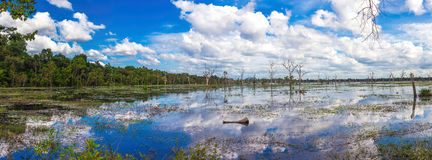 Lake in the Angkor Wat heritage. Panorama Stock Photography