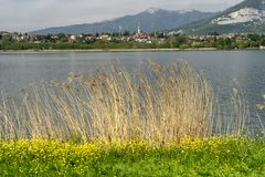 Lake of Annone, Lecco, Italy stock photography
