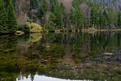 Lake Arber. View on the lake Arber in Bavaria. Germany Royalty Free Stock Photography