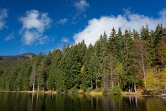 Lake Arber in Bavaria, Germany during Fall. (Grosser Arbersee) Stock Image