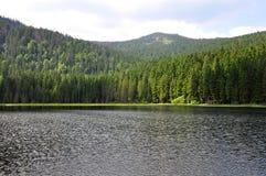 Lake Arber in Bavaria (Grosser Arbersee). Colorful and crisp image of lake Arber in Bavaria (Grosser Arbersee Stock Images