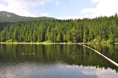 Lake Arber in Bavaria (Grosser Arbersee). Colorful and crisp image of lake Arber in Bavaria (Grosser Arbersee Royalty Free Stock Photography