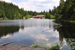 Lake Arber in Bavaria Grosser Arbersee. Beautiful Lake Arber in Bavaria Grosser Arbersee Royalty Free Stock Photos