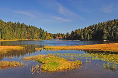 Lake arbersee in the bavarian forest Stock Photo