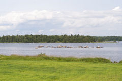 Lake Asnen in Sweden Royalty Free Stock Photo