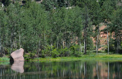 Lake and Aspen Trees in Rocky Mountains Royalty Free Stock Photo