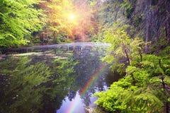 Free Lake Asya Marmarosh Stock Image - 60310501