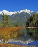 Lake in the Autumn. This image of the lake, reeds, marsh area, forest and snowcapped mountains was taken in western MT Royalty Free Stock Image