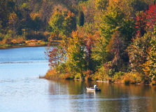 Lake in autumn. With fisherman Royalty Free Stock Image