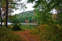 Lake In Autumn. Scenic view of lake and trees in autumn royalty free stock images