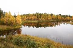 Lake in autumn Royalty Free Stock Image