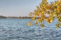 Lake in autumn Stock Images