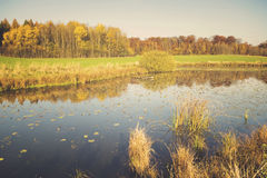 Lake in autumn, colorful robes, yellowed, colorful leaves on tre Royalty Free Stock Image