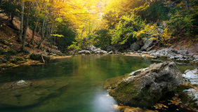 Lake in autumn forest. Stock Photography