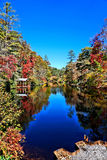 Lake in an autumn forest Stock Images
