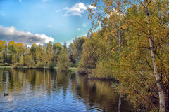 Lake in the autumn stock image