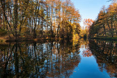 Lake in the autumn park Stock Photos