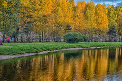 Lake in the autumn Royalty Free Stock Image