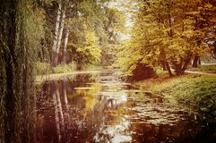 Lake in the autumn park Royalty Free Stock Photo