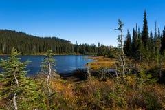 Lake at autumn Stock Photos