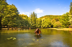 Lake (autumn season) Royalty Free Stock Image