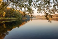Lake in the autumn season. Dutch lake in early morning sunlight. The mirror smooth water surface reflects the reed and the trees. It is autumn now and the colors royalty free stock photography