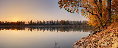 Lake at autumn with tree, Jursky Sur Stock Image