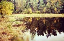 The lake. Royalty Free Stock Photo