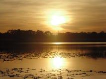 Lago en el otono. Esta es una imagen de un lago de orlando en el atardecer Royalty Free Stock Photos