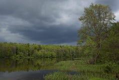 Lake av träna Royaltyfri Fotografi