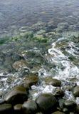 Lake Backgound. Ripples on Dove lake, Cradle Mountain, Tasmania Royalty Free Stock Image