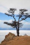 Lake Baikal. Olkhon. Stock Images
