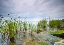 Lake Balaton Hungary Stock Image