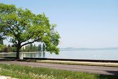 Lake Balaton, Hungary. Road along the Balaton shore, Hungary stock photo