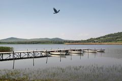 Lake Balaton in Tihany Royalty Free Stock Photography