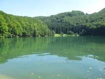 Lake Balkana in Bosnia and Herzegovina. Lake, forest, nature Stock Images