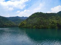 Lake and bamboo forest in china royalty free stock photography
