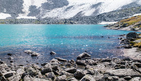 Lake bank in the Altai mountains, Russia Stock Image