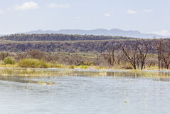 Lake Baringo, Kenya Stock Photography