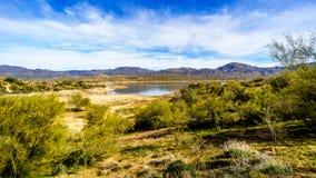 Lake Bartlett and the surrounding semi desert of Tonto National Forest. Lake Bartlett and the surrounding semi desert with its many Saguaro cacti in Tonto Royalty Free Stock Photo