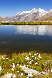 Lake at the base of the Matterhorn, Zermatt Switzerland Royalty Free Stock Photography