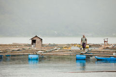 Lake Batur. BALI - JANUARY 21. Man taking care of his fish farm on  on January 21, 2012 in Bali, Indonesia. Fish farming is their main source of subsistence on Stock Photos
