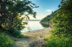 Lake beach and trees Royalty Free Stock Photography