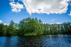 Lake at Bear Brook State Park, New Hampshire. Royalty Free Stock Photography