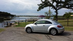 Lake Beetle stock images
