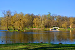 Lake Beloe in Palace Garden. Gatchina. St. Petersburg, Russia. Palace Garden, State Museum in Gatchina, Bridge in the Water Labyrinth, Lake Beloe Royalty Free Stock Photos