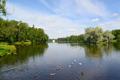 Lake Beloye in Gatchina park, Russia stock photography