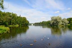 Lake Beloye in Gatchina park, Russia Stock Photography